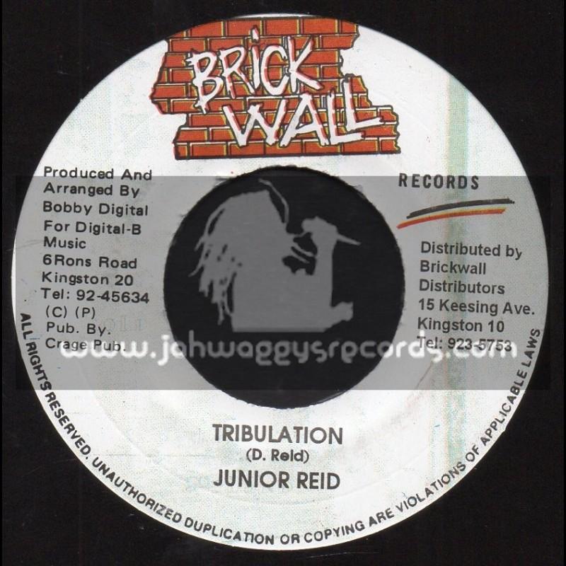 "Brick Wall-7""-Tribulation / Junior Reid"