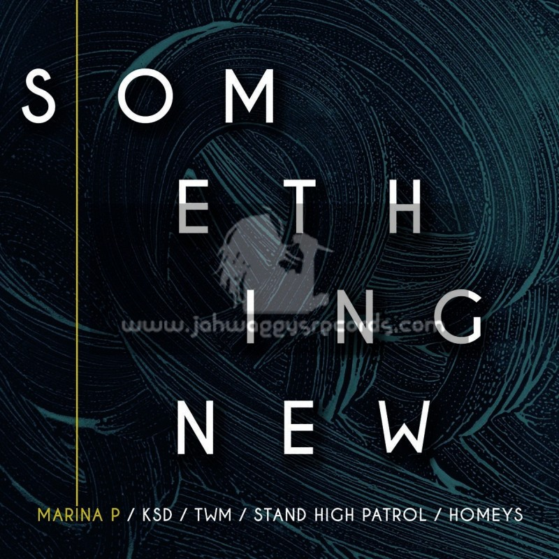 "Homeys Records-12""-Something New / Marina P - KSD - TWM - Stand High Patrol - Homeys"