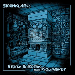"Skank Lab 8-12""-Violinbwoy Meets Storm & Break"