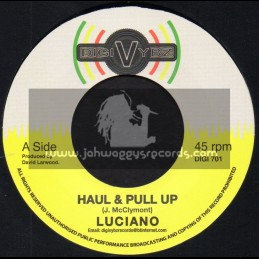 "Digi Vybz-7""-Haul And Pull Up / Luciano + Conscience / Jazzwad"